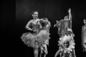 spectacle-de-danses_34890361506_o[1]