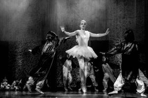 spectacle-de-danses_34890671756_o[1]